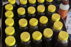 2020 bottles of OBBA honey!